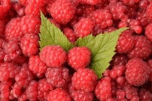 raspberries-1476204_640